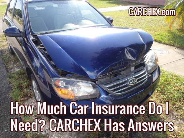 how much car insurance do i need carchex has answers. Black Bedroom Furniture Sets. Home Design Ideas