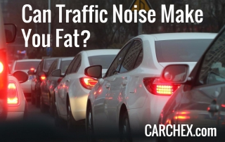 Can Traffic Noise Make You Fat?